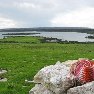 Telephone-wire basket resting on lichen-covered, limestone rocks on the hills above Pelican Lagoon, Kangaroo Island.