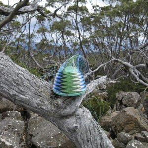 Telephone wire basket in progress, on a dead log in the bush near Smiths Monument, on top of Mt Wellington, Tasmania.