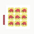 Walk the Turtle greeting card in Raspberry & Lemon