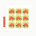 Walk the Turtle greeting card in Pear & Apricot
