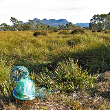 Telephone wire basket in its early stages, in buttongrass, with the King William Ranges in the distance.