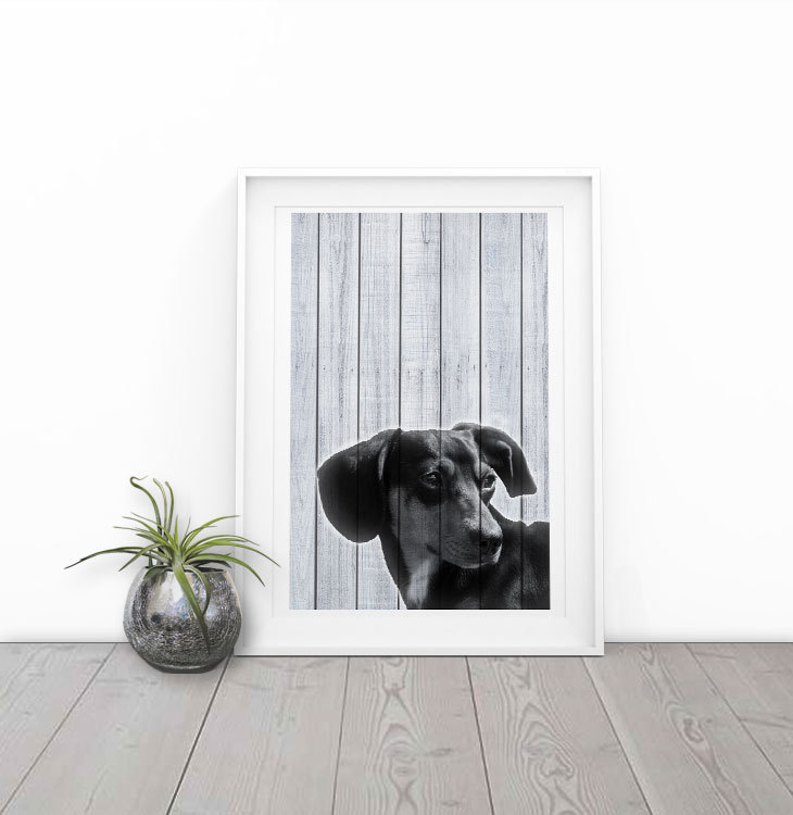 Wiener Dog on wood boards, black and white art print by The Printed Menagerie on Etsy