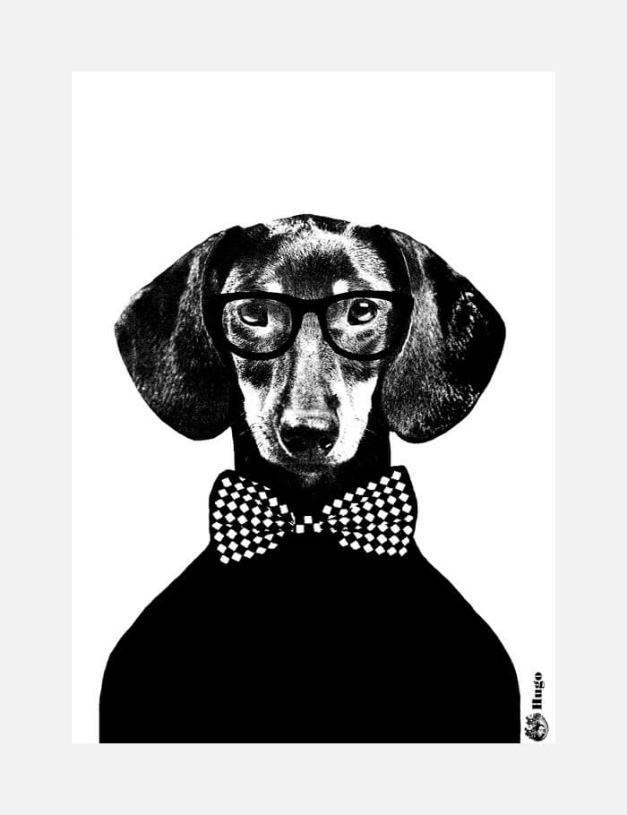 A fashionable black and white print featuring a sausage dog wearing glasses and bowtie by Lisa Bengtsson on Desenio